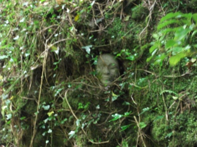 Beltane face in the trees