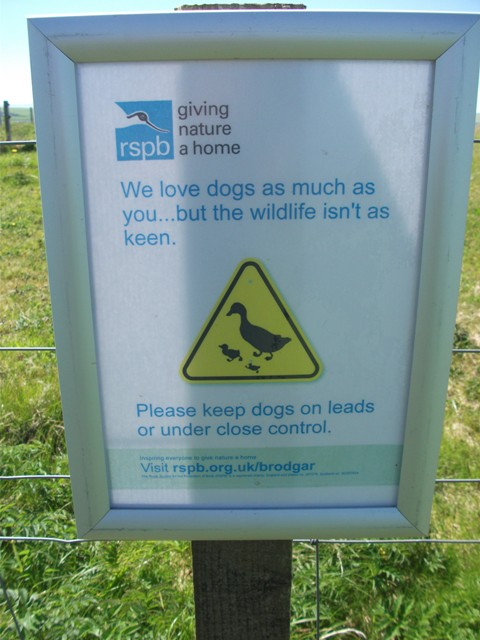 dog on lead sign Brodgar RSPB Bell