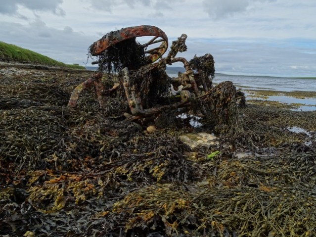 Rendall shoreline plough covered in seaweed Mike Bell