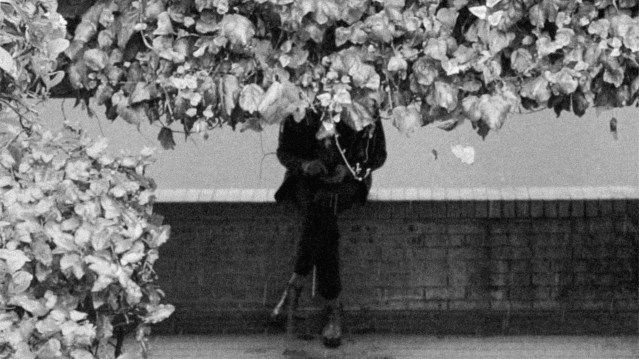 Erland Cooper with his head obscured by leaves.