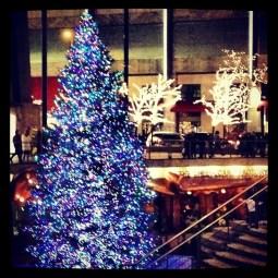 Tree's all lit up on Michigan Avenue!