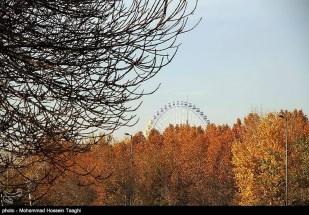 Razavi Khorasan, Iran - Mashhad in Autumn 10