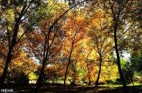 Razavi Khorasan, Iran - Sabzevar in autumn 05
