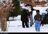 Snow Kerman Iran Snowballs 07