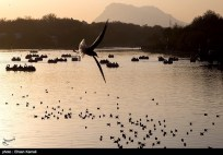 Zayanderud River in Iran's Isfahan Province 10