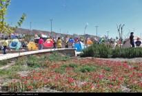 Sizdah Bedar 1394 in Iran - 12