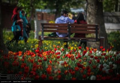 Tehran, Iran - Bagh-e Irani Park 7