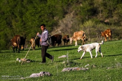 East Azerbaijan, Iran - Kaleybar in spring 1