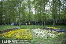 Tehran, Iran - Sizdah Bedar 1395 (2016) 22