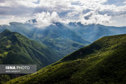 Semnan and Golestan Provinces, Iran - Cloud Forest (Jangal-e Abr) - 08