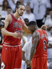 Joakim Noah of the Bulls clasps hands with teammate Nate Robinson