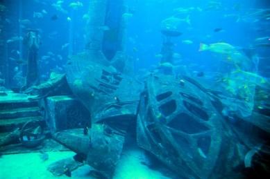 Atlantis Hotel - the aquarium / Lost City