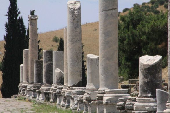 Columns up close