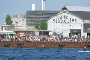 Copenhageners enjoying the day