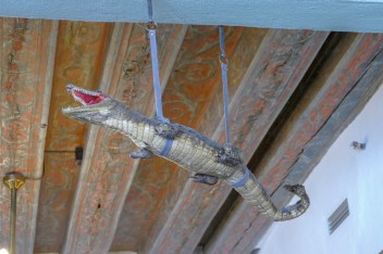 An alligator suspended from the ceiling. Naturally.