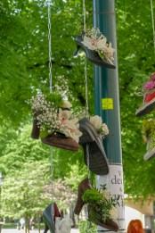 Shoefulls of flowers