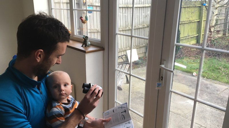 The RSPB Big Garden Birdwatch – with a baby!
