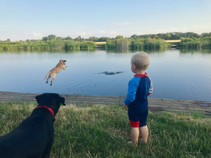 Wild swimming with toddlers