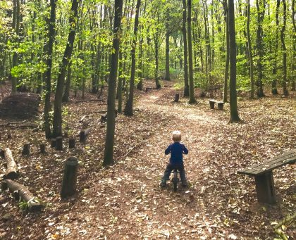 autumn outdoor activities for toddlers