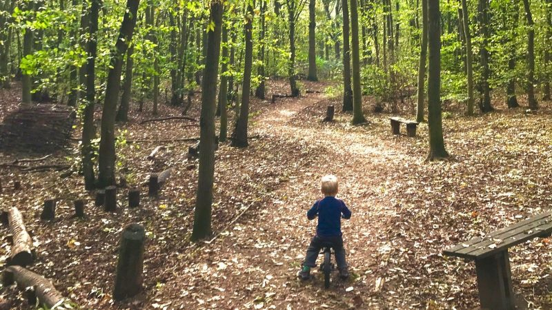 10 autumn outdoor activities for toddlers