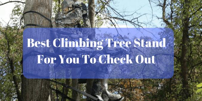 Best Climbing Tree Stand