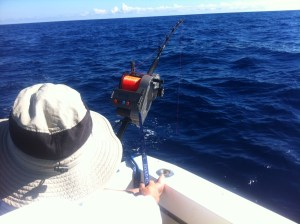 Swordfishing Electric Reel