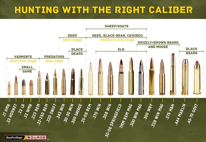 Hunting Caliber Choices
