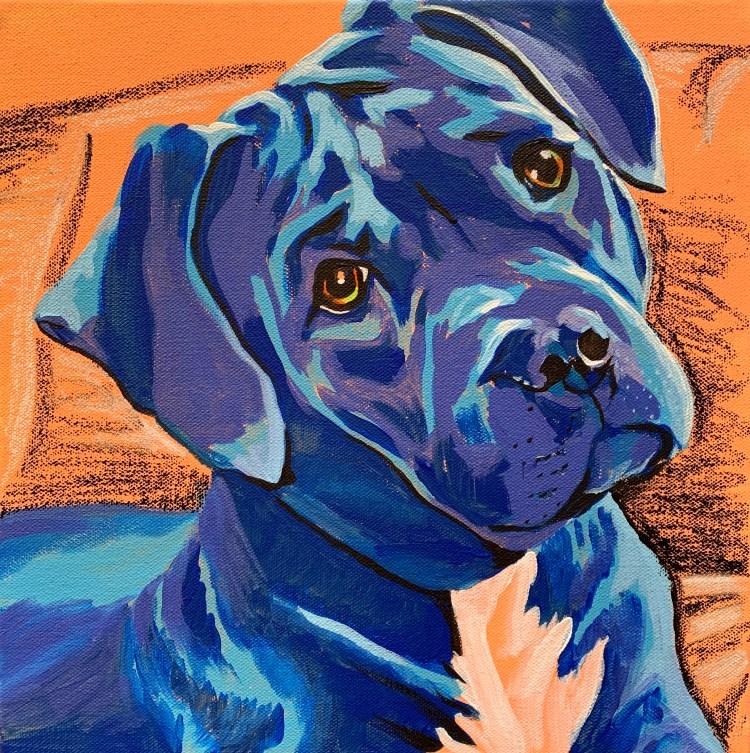 Pet portrait painting of Elvis the pitbull
