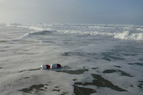 Red and white floats identify lost crab gear drifted into the surf zone