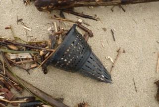 Hagfish trap funnel