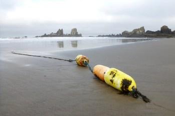 Lost crab buoy | June
