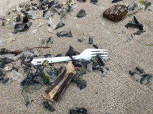 Want a fork for that Velella salad?