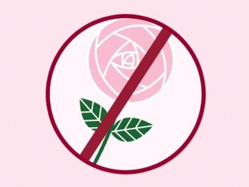 no-roses