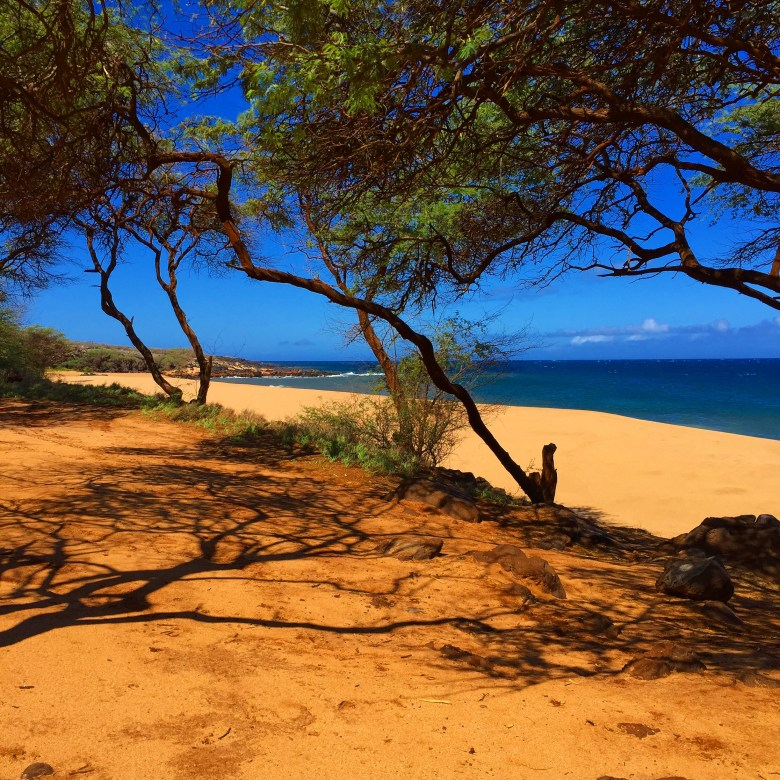 Lanai, Hawaii beach