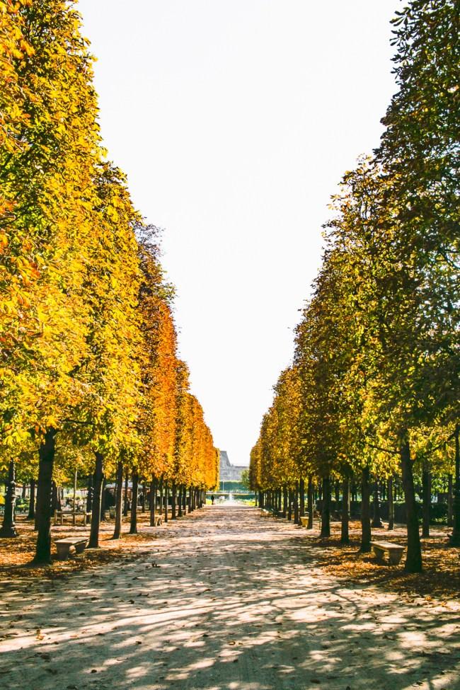 the-overseas-escape-paris-fall-2016-11