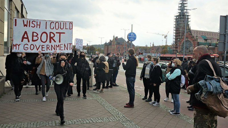 "A crowd of protestors in Gdańsk. One holds a sign reading, ""I wish I could abort my government."""