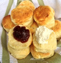 https://thepaddingtonfoodie.com/2013/05/22/bring-a-plate-australias-biggest-morning-tea-freshly-baked-scones-with-jam-and-cream/