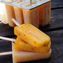 https://thepaddingtonfoodie.com/2013/12/31/the-summer-edition-sunshine-and-happiness-on-a-stick-sweet-and-spicy-mango-lime-and-chilli-paletas/
