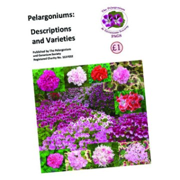 PAGS Leaflets