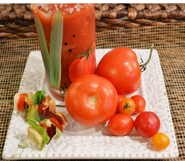 fresh tomato cocktail thepaintedapron.com