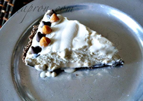 bushwacker pie 1 thepaintedapron.com