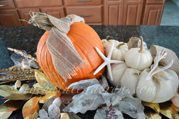 beach pumpkins and shells
