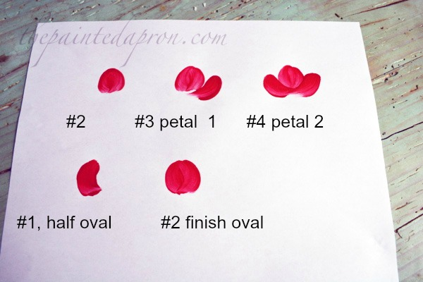 flower shape & petals