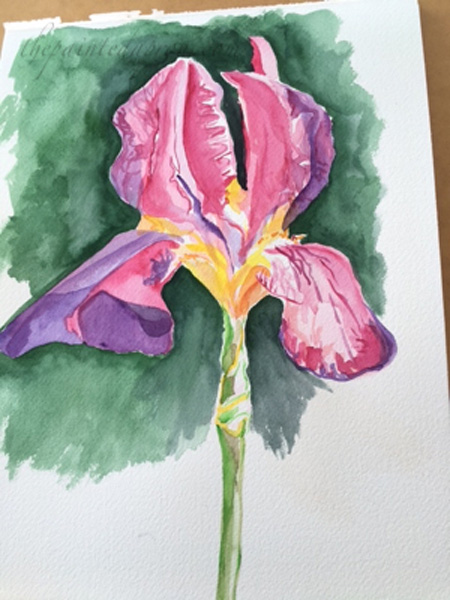 iris before