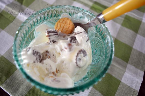 peanut butter & chocolate ice cream thepaintedapron.com