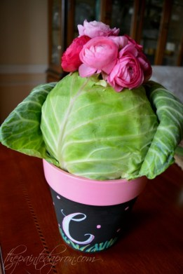cabbage pot