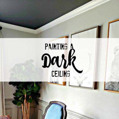 Painting a ceiling a dark color
