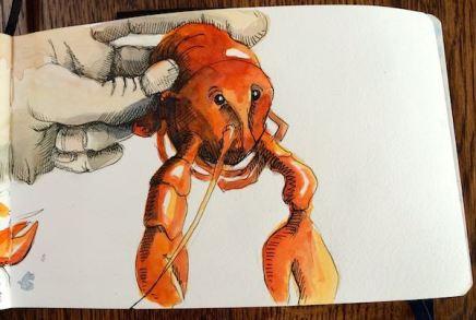 crayfish 2015IMG_6215