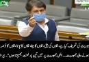 I curse democracy – Barrister Saif's speech in Parliament