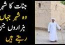 City of Jinns, Story of Bhala, Oman